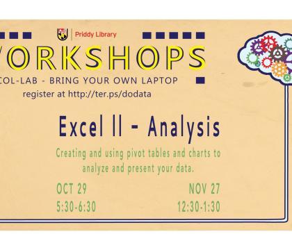 Excel II - Analysis Workshop Flyer