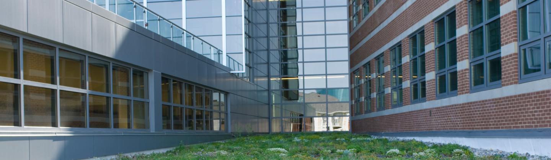 USG Green Roof
