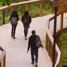 Students walking on boardwalk
